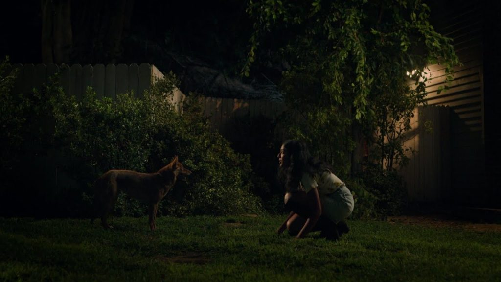 """Devi and the coyote - Never have i ever - S1E3 """"Gotten Drunk With ..."""
